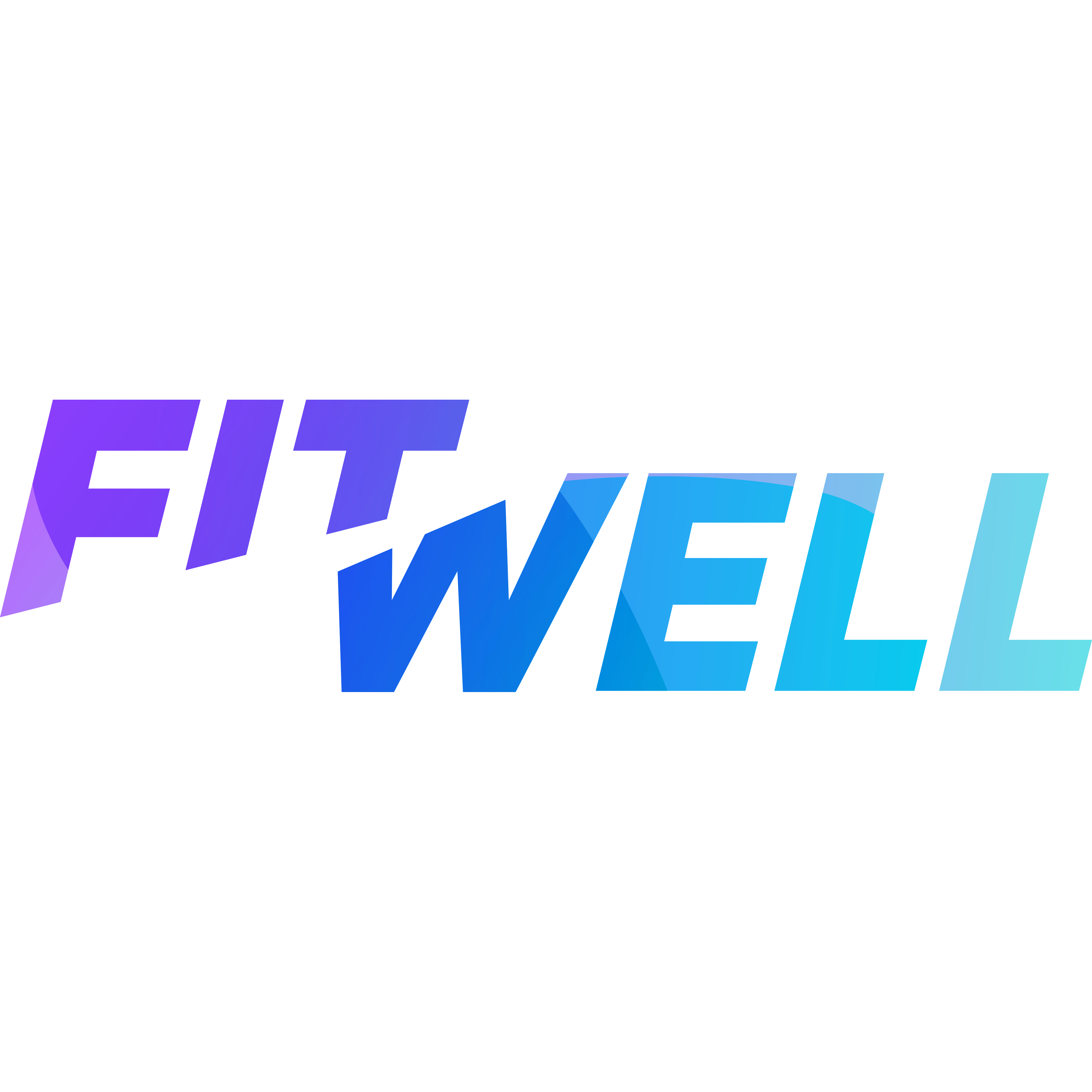 Fitwell logo 4000x4000 colored