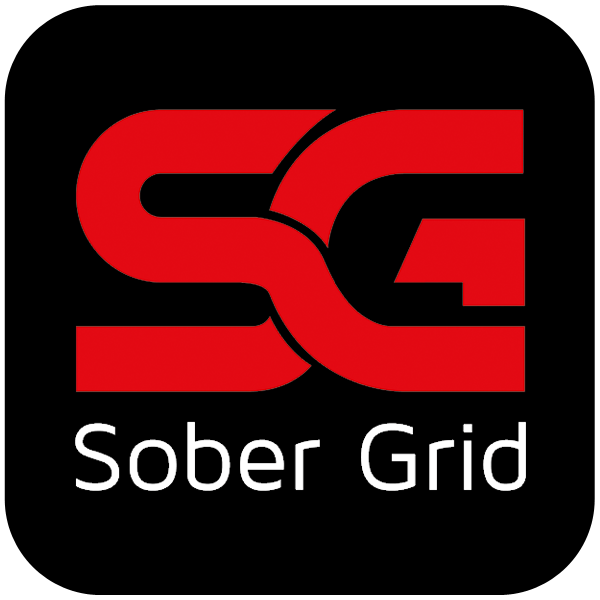 Sober grid icon
